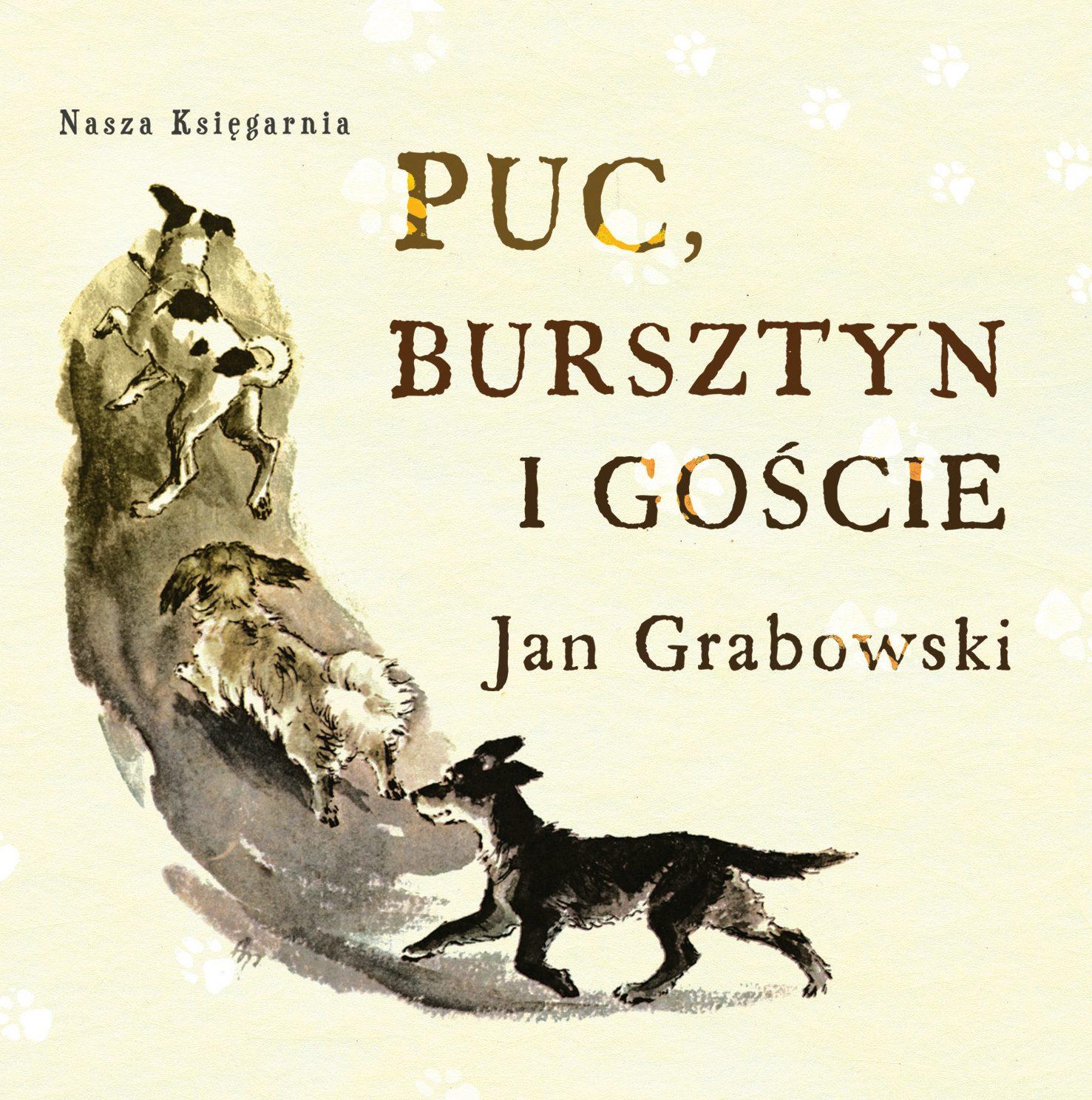 Puc, Bursztyn i goście - audiobook – Jan Grabowski, Nasza Księgarnia, audibook, książki audio, dla dzieci i młodzieży, mp3, epartnerzy.com