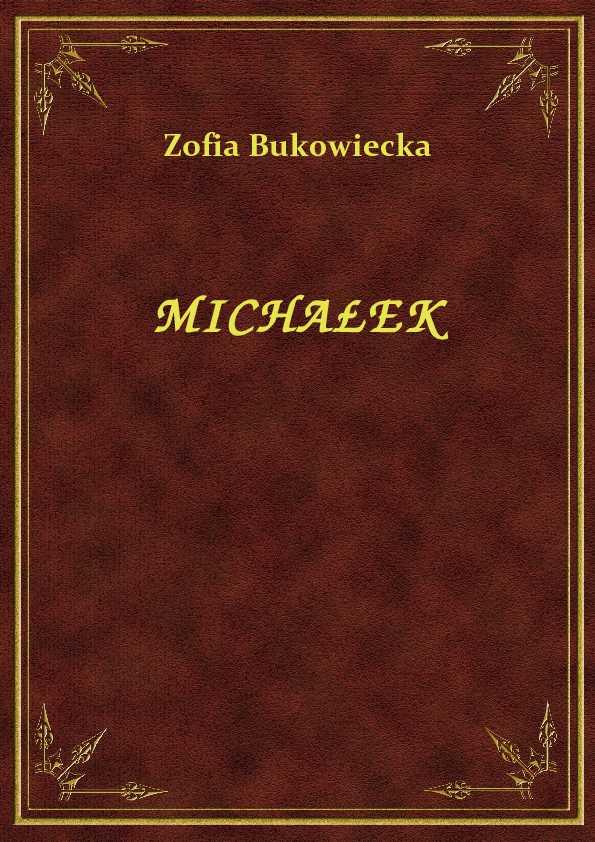 Michałek ebook